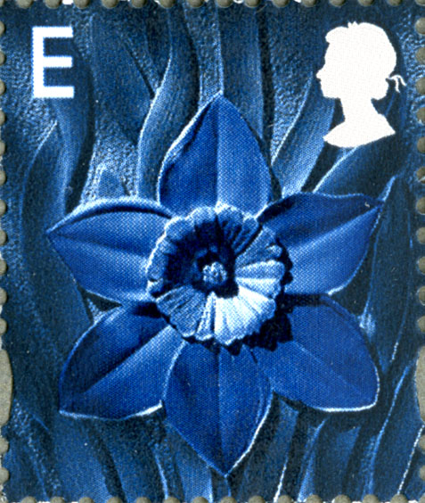 A blue daffodil on a Welsh European value stamp.