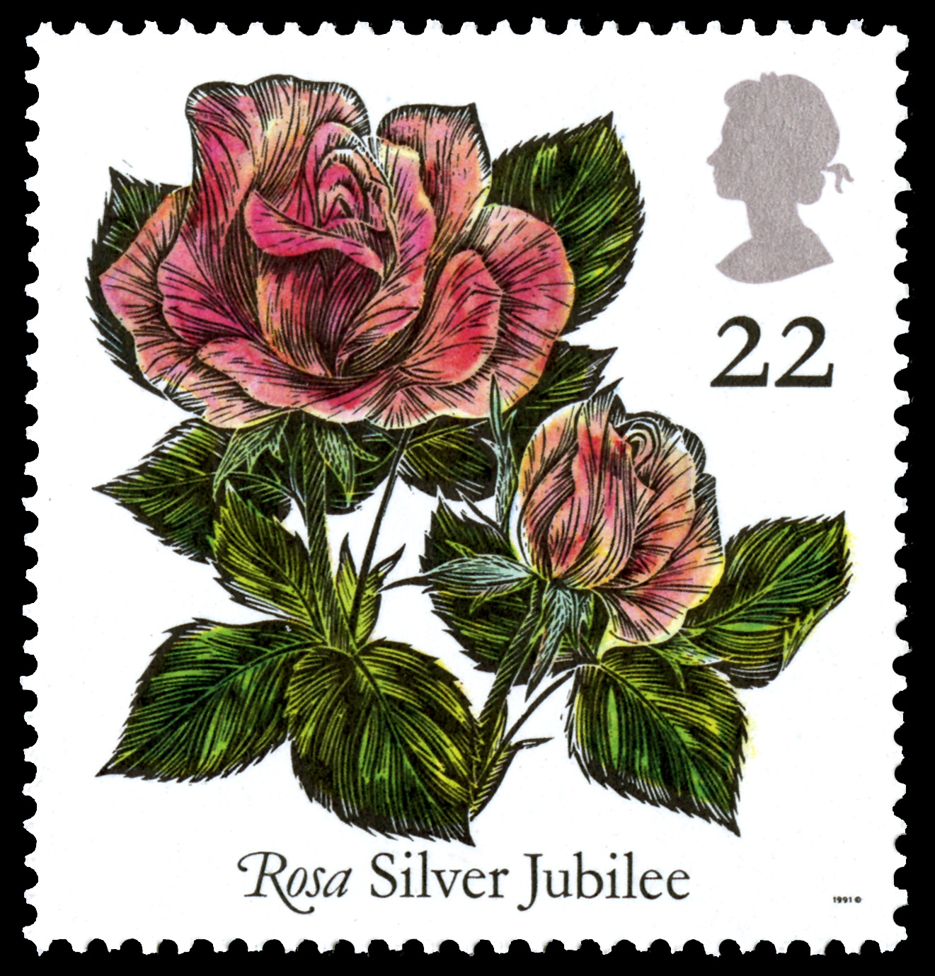 Red rose stamp with a value of 22 pence.