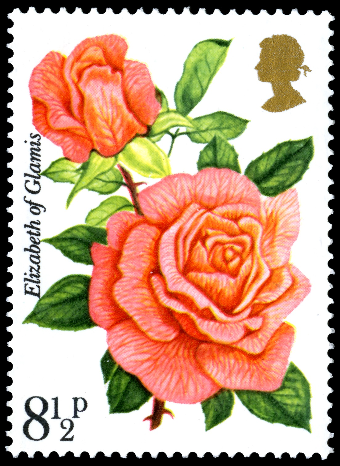 Red rose stamp with a value of 8 and a half pence.