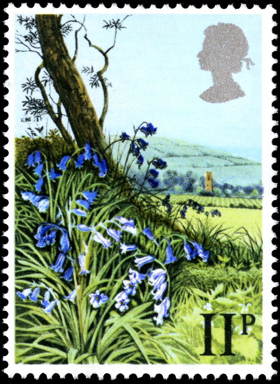 Wild Bluebells in the countryside on a 11 pence stamp.