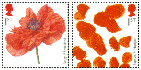 Two stamps depicting poppies by artists F. Strickland and H. Hodgkin.