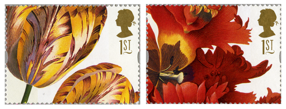 Two images of different types of Tulips from the 1997 greetings stamp issue.