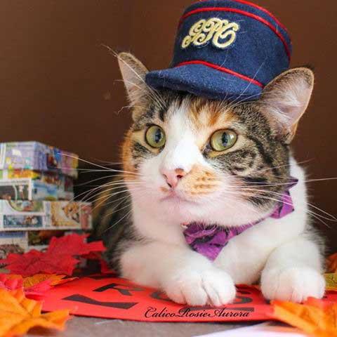 October Postal Museum Puss - Rosie