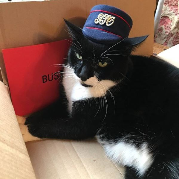 November Postal Museum Puss - Buster