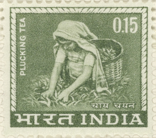 Stamp depicting a female tea picker plucking tea leaves.