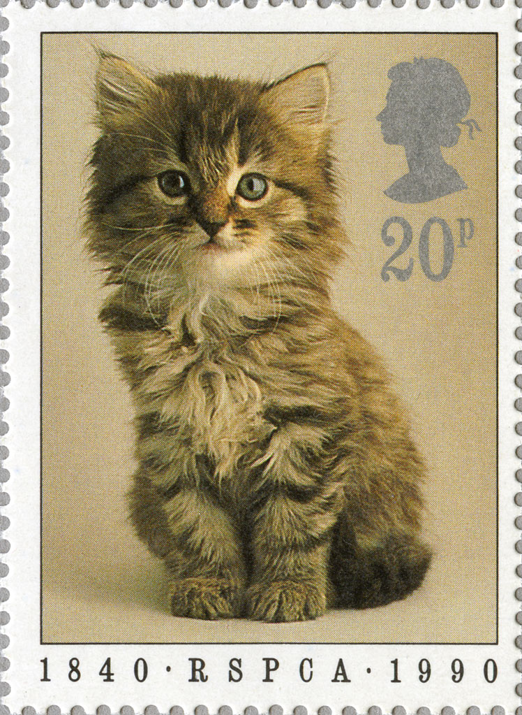 Stamp depicting a small brown kitten.