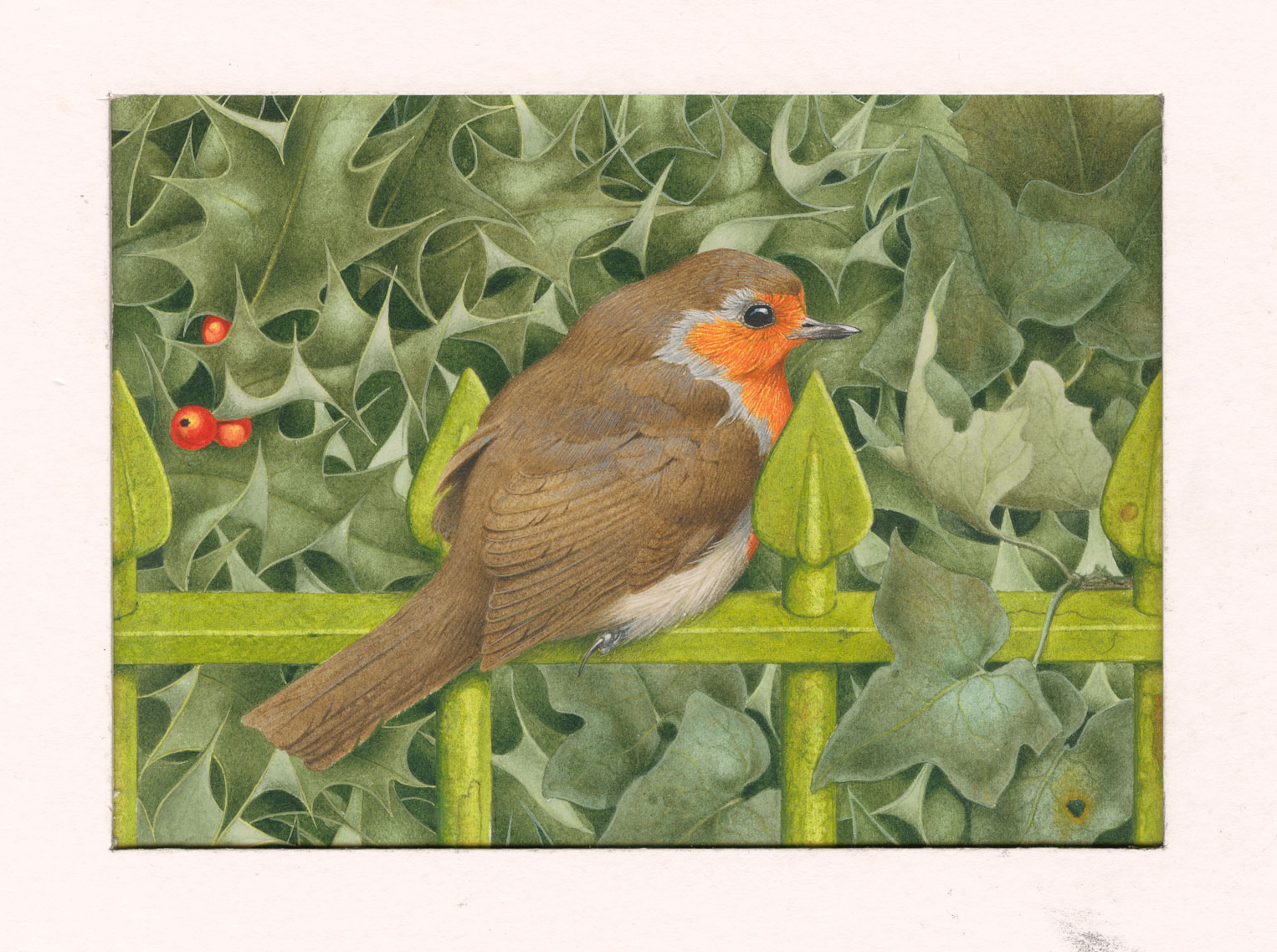 A painting of a robin sat on a fence against a bush of ivy.