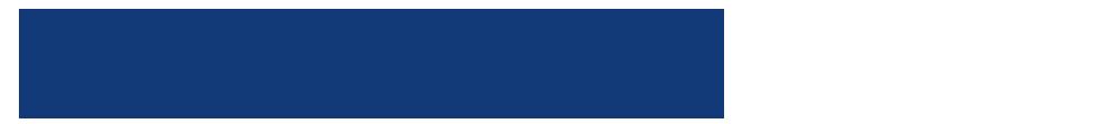 VocalEyes logo.