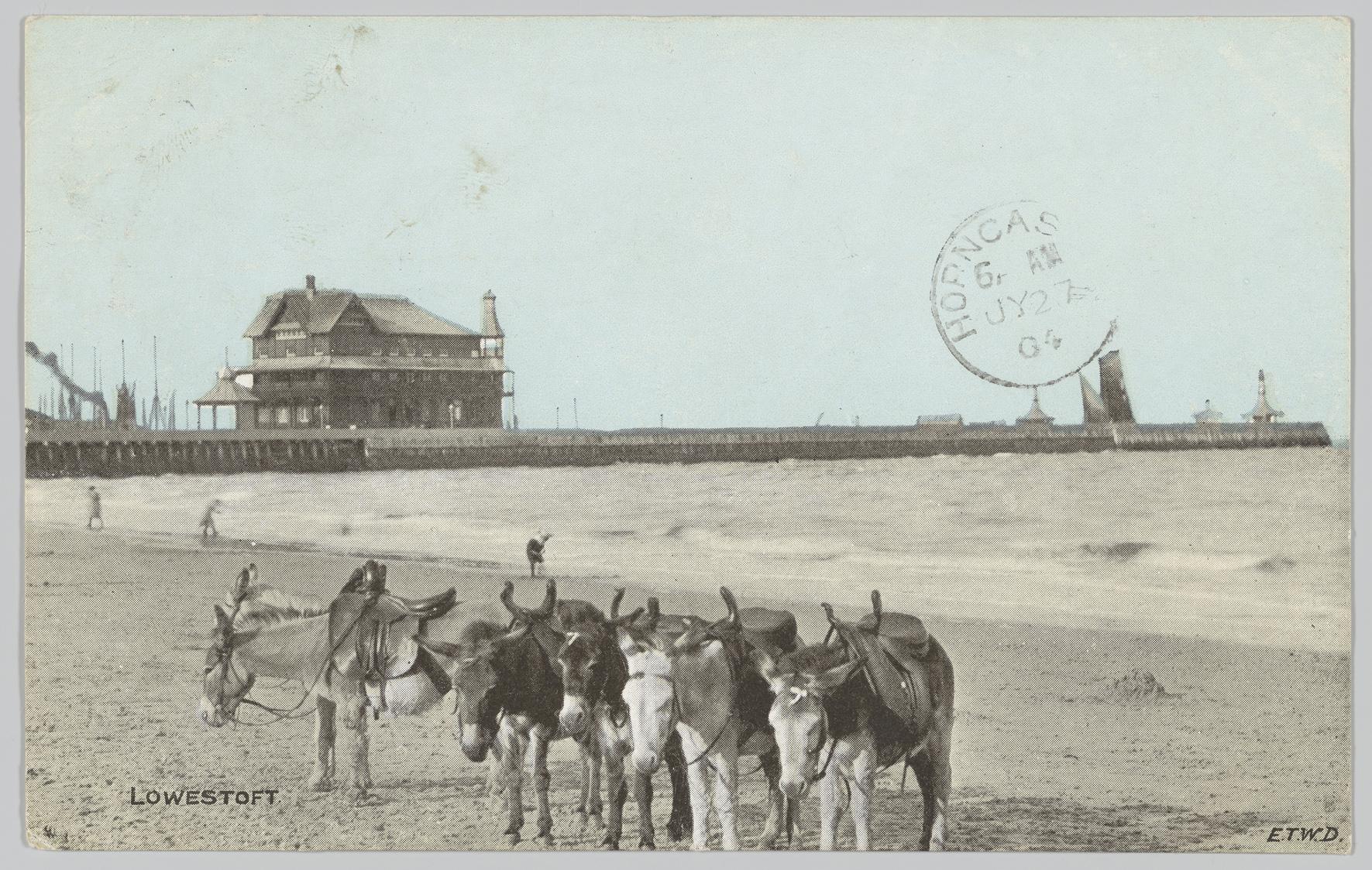 Lowestoft Donkey Postcard, 1904, PH64Y/01a